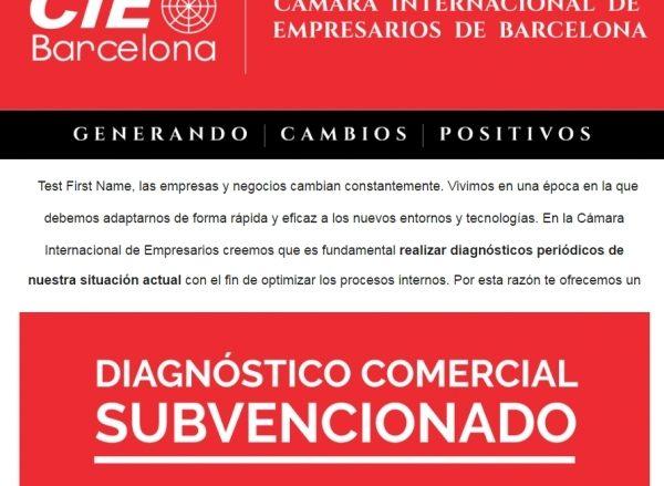 Diagnosis Comercial Subvencionada. Programa de Incremento de Ventas